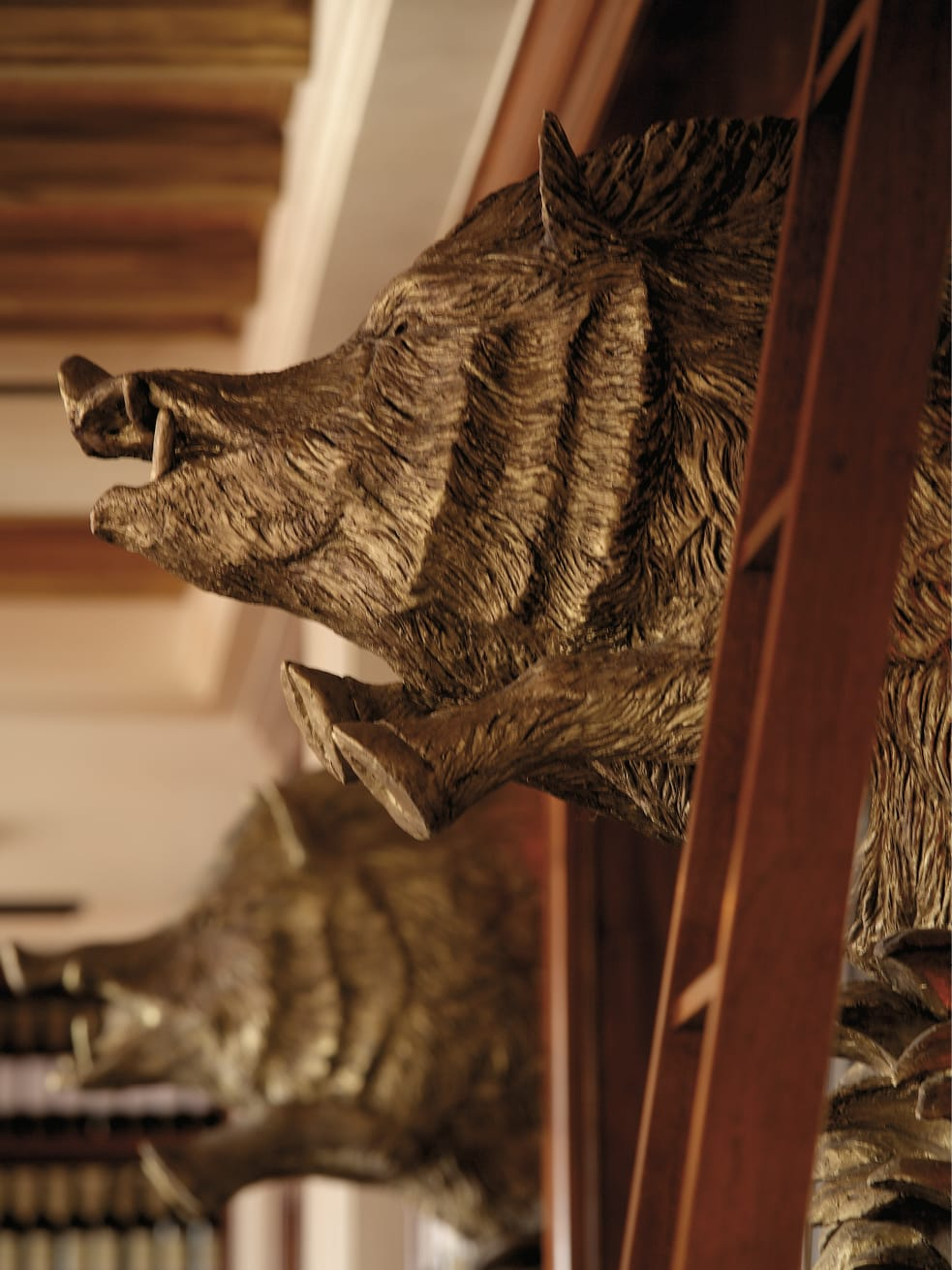 A sculpture of a boar hanging from the wall